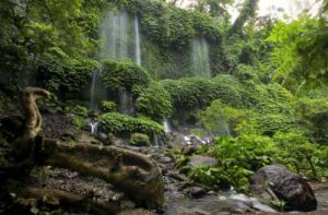 benang-kelambu-waterfall1