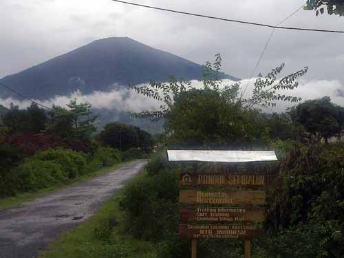 pondok-sembalun-lombok