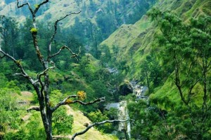 sajang-soft-trekking