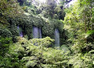 benang-kelambu-waterfall4
