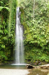 benang-stoke-waterfalls2