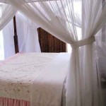 pondok-senaru-cottages-lombok10