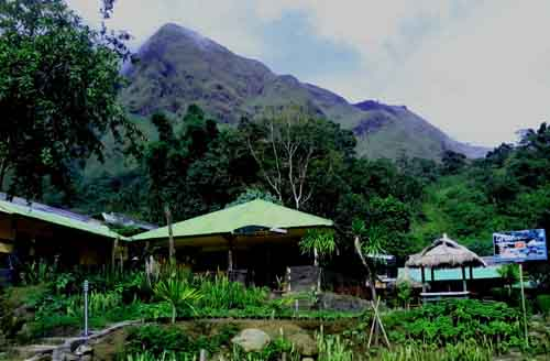 sembalun-green-forest-homestay0