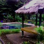 sembalun-green-forest-homestay2