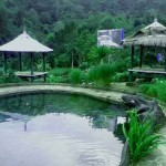 sembalun-green-forest-homestay3