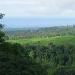 senaru-panorama-trekking10